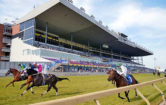 Woodbine Racetrack Photo